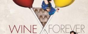 Concorso Fotografico Verona Wine Top  II Edizione