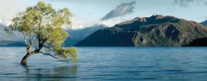 InfoDay Regionale LIFE: Programma per l'Ambiente e l'Azione per il Clima
