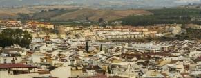 10 mesi a Malaga con EVS!
