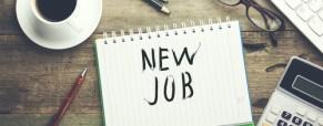E adesso cosa faccio? manuale pratico per trovare lavoro