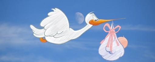 Assegno Prenatale con il Comune di Arzignano